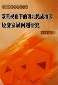 正版图书 区域经济学博士文库:双重视角下的西北民族地区经济发展