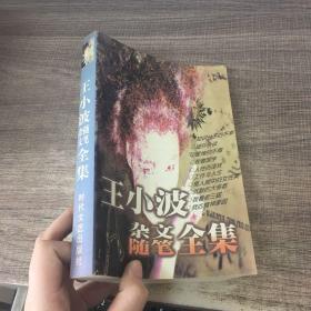 王小波杂文随笔全集