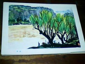 16开美术画页 《黄河》-栽树、9品。印刷品