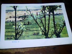 16开美术画页 《黄河》黄河农场一角、9品。印刷品