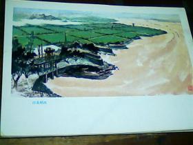 16开美术画页 《黄河》沿黄稻改、9品。印刷品