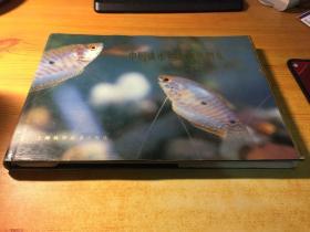 中国淡水鱼类原色图集(第二集)