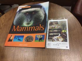 英文原版  DK guide to Mammals  哺乳动物指南