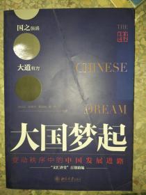 正版图书大国梦起 变动秩序中的中国发展进路9787301271070