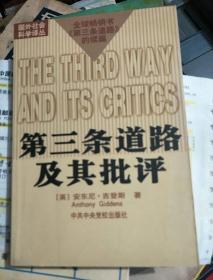 第三条道路及其批评