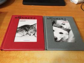 向猫儿同志学习:宠物的智慧