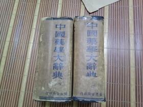 中国药学大辞典 (上下册)