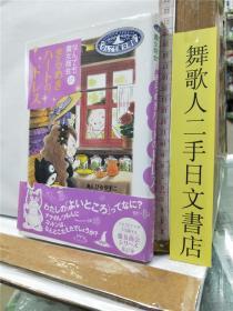 なんでも魔女商会 17 きらめきハートのドレス 日文原版32开硬精装儿童读物 あんびるやすこ 岩崎书店