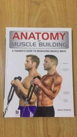 ANATOMY of MUSCLE BUILDING肌肉构筠的解剖学