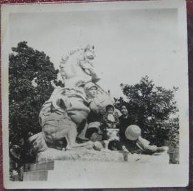 """老照片:英雄欧阳海雕塑,上海西郊公园(上海动物园)——欧阳海,湖南郴州市桂阳县人。1963年11月18日,舍身救列车牺牲于衡阳市衡东县新塘镇。用自己舍身推战马、勇救人民生命财产的英雄壮举,实践了自己的人生格言:""""如果需要为共产主义的理想而牺牲,我们每一个人,都应该也可以做到脸不变色心不跳。""""【陌上花开系列】"""