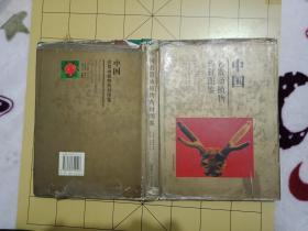 1996年1版1印,印3100册16开精装 《中国名贵动植物药材图鉴》(彩色图片---有虎骨.豹骨鉴定的资料  ----书品如图    总体85品