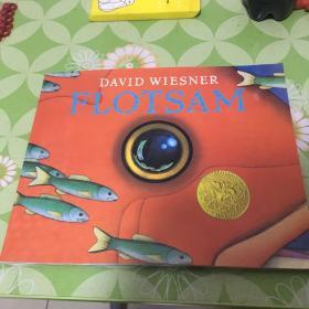 DAVID WIESNER FLOTSAM 海底的秘密