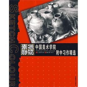 中国美术学院附中习作精选:素描静物