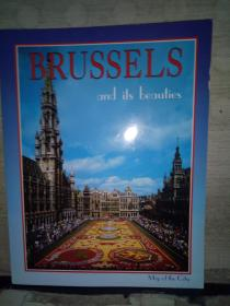 BRUSSELS  and its beauties(英文原版)