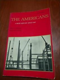 THE AMERICANS A BRIEF HISTORY SINCE 1865