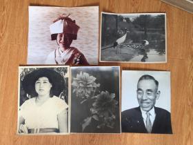 战后日本大幅照片五张