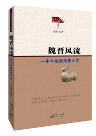 魏晋风流:一本书读懂魏晋文明