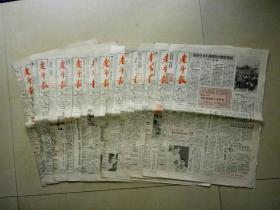 老年报(1989一5、6月)共11份.