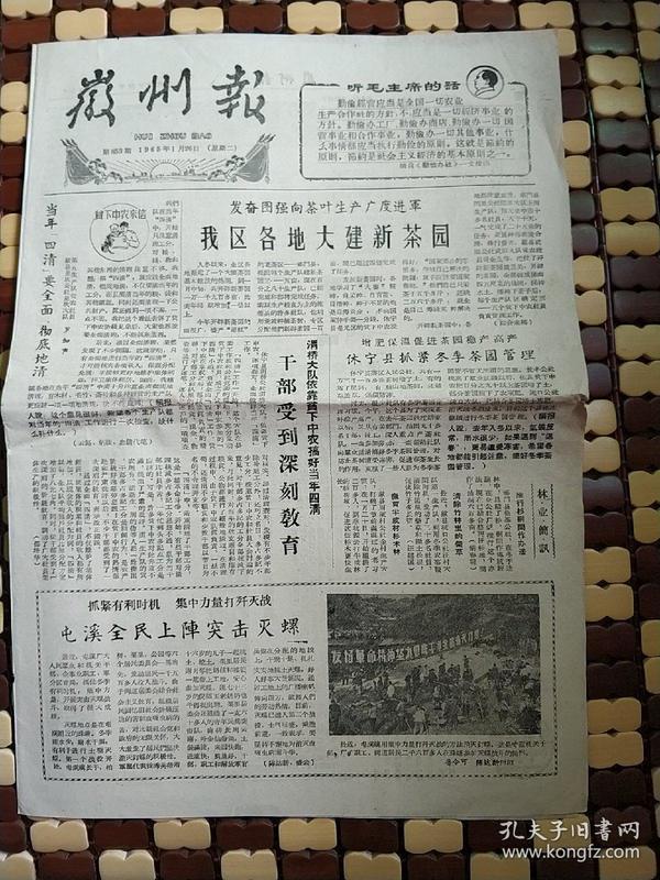 1965年徽州报