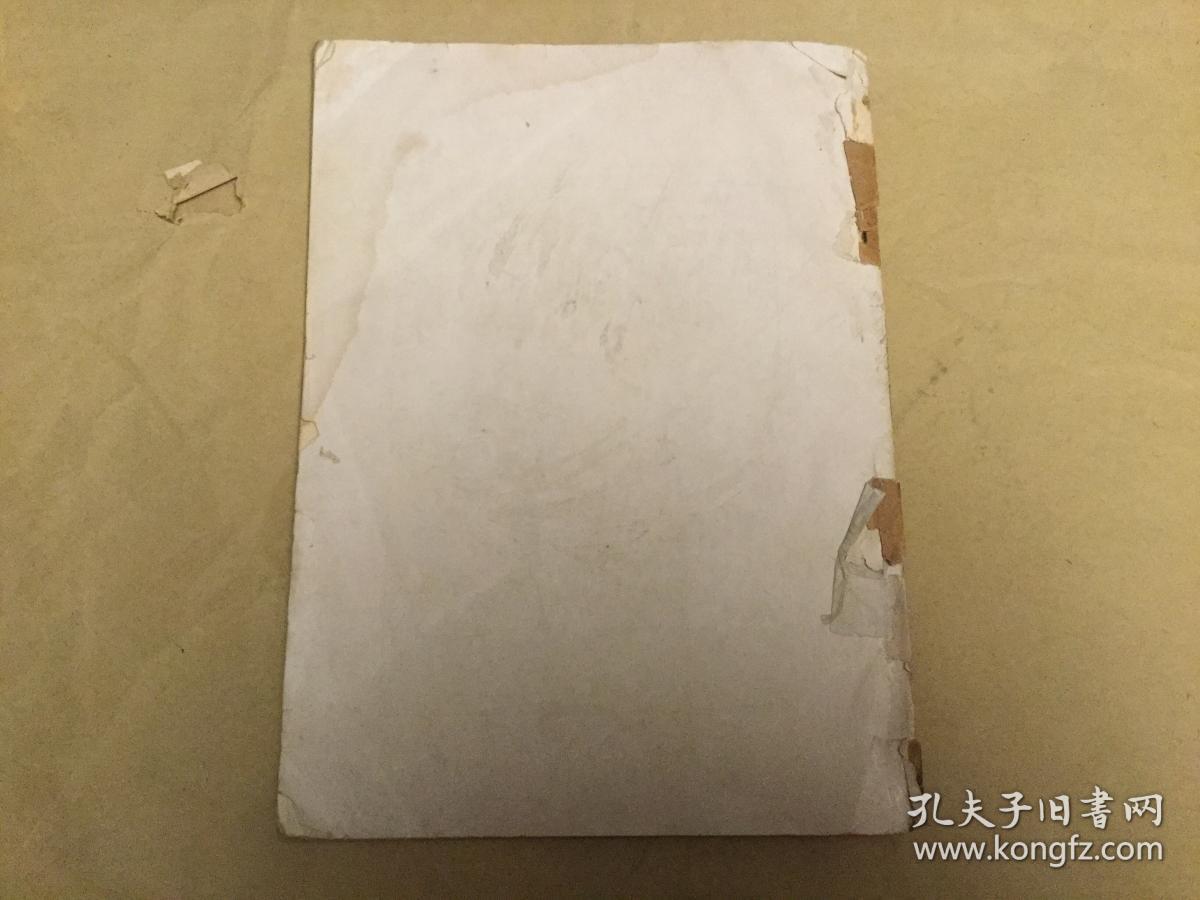 ung咸阳笔记豌豆属的蚕豆英文抽印本中国植兰州民办小学图片