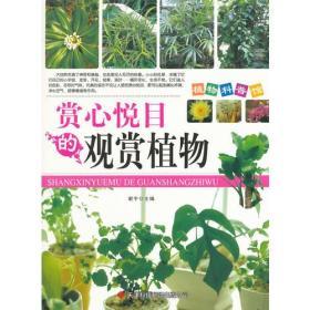 ●植物科普管:赏心悦目的观赏植物