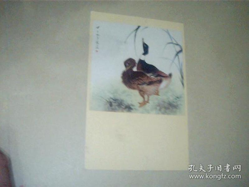 1957年 小画片 《双鸭》【寒江汀作】 14.5*9.5CM