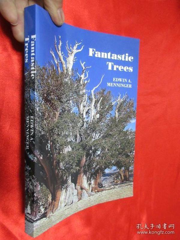 Fantastic Trees       【详见图】