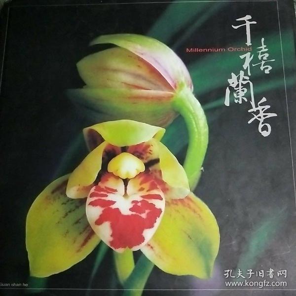 ★千禧兰香[12开精线装]中华民国九十年十二月初版′