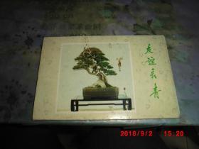 明信片:友谊长青(10张)