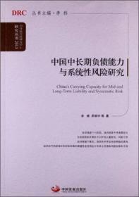 中国中长期负债能力与系统性风险研究