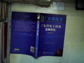 广东蓝皮书:广东省电子商务发展报告(2013)