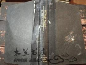 原版英法德意等外文书 THE PAGE TURNER DAVID LEAVITT HOUGHTON MIFFLIN COMPANY Boston New York 大32开硬精装