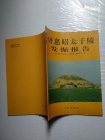 唐惠昭太子陵发掘报告