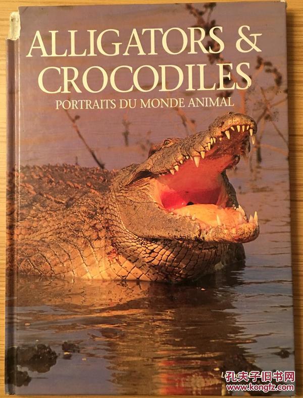 alligators &crocodiles