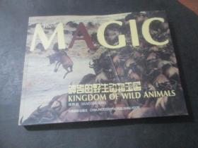神奇的野生动物王国