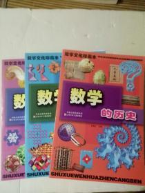 数学文化珍藏本全3册全三册套装 y:数学的历史 数学多美妙 数学真好玩