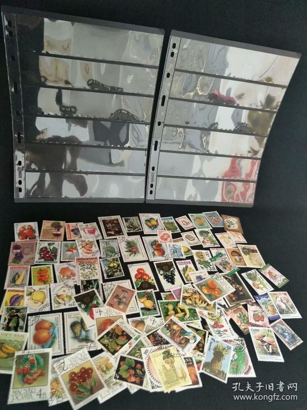 外国水果类专题邮票一套100张无重复,送2张精美双面邮票板,包邮!全部都是盖章邮票,很精美!实物发货!低价会友,保真