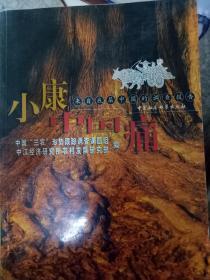 【现货~】小康中国痛:来自底层中国的调查报告9787500442561