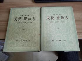 【美国文化丛书】《天使,望故乡》精装两册全