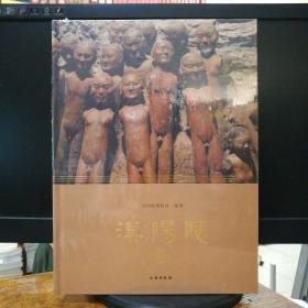 汉阳陵(修订版)