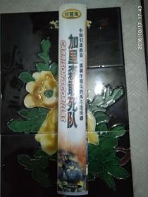 加里森敢死队 26碟VCD