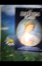 The Bradford Book of Collectors Plates (1984)