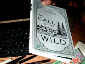 THE CALL OF THE WILD    磨砂皮软精装    C7
