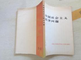 中国社会主义经济问题