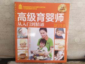 高级育婴师从入门到精通 (彩色图解版)