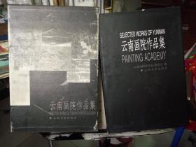 云南画院作品集【8开精装 带盒】