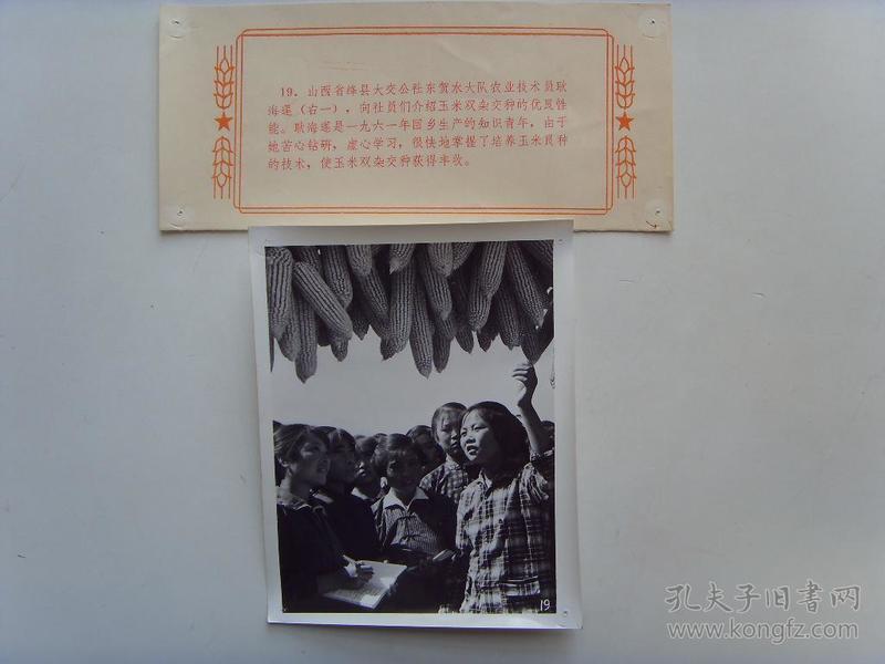 老照片:【※1966年,山西绛县回乡知青耿海莲,给社员介绍杂交玉米优良性能※】