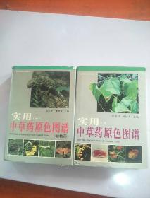 实用中草药原色图谱(三、四)两本合售  精装