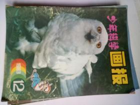 少年科学画报1983年1-12期全缺第10期