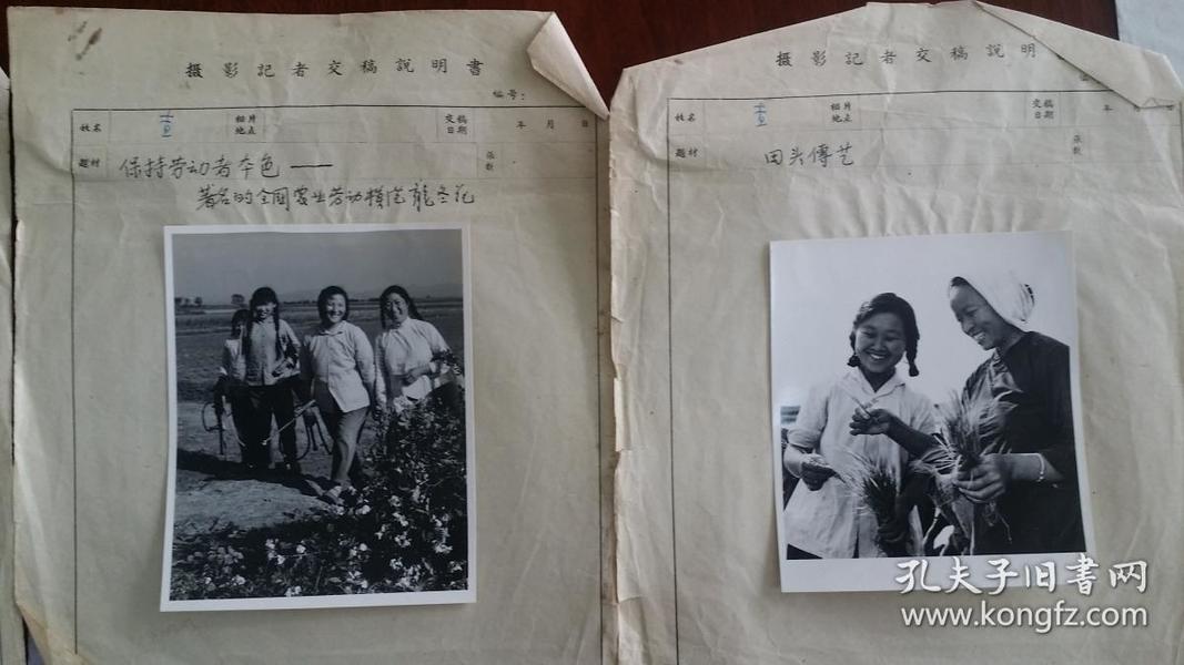 老摄影家查若权1960年拍摄交稿照片三种《保持劳动者本色…全国著名劳模龙冬花》《用武之地新的一代》《田头传艺》